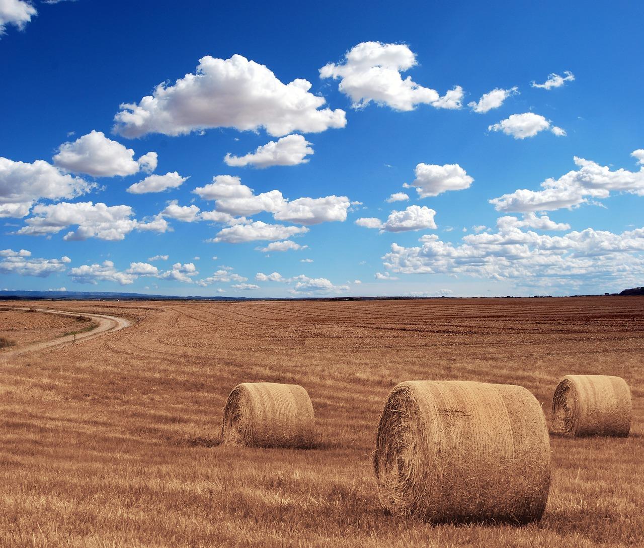 Nowoczesne maszyny dla rolnictwa